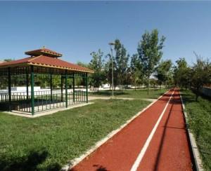 İstanbul Spor Vadisi Projesi-image85